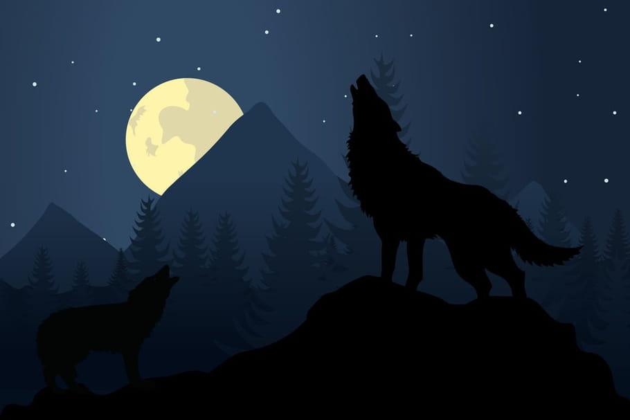 Comptine Bonsoir, bonsoir les loups