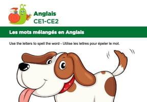 Les mots mélangés en Anglais, exercice17
