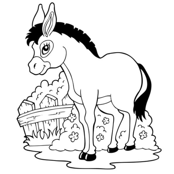 Coloriage Le petit âne de la ferme