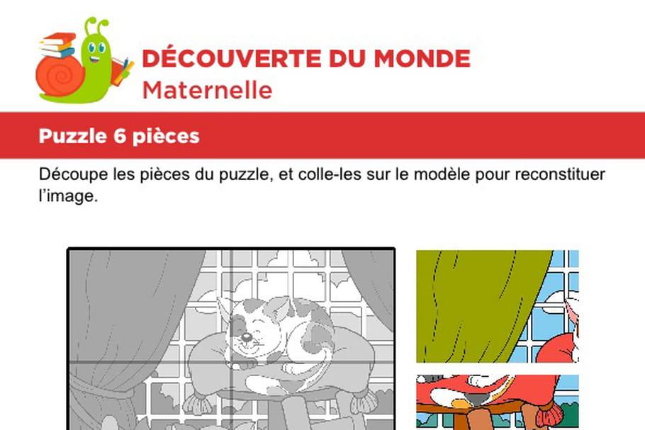 Puzzle 6pièces, deux petits chats