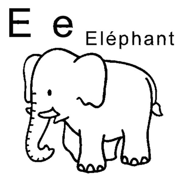 Coloriage lettre E comme éléphant en Ligne Gratuit à imprimer