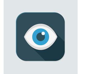 Comment fonctionne la vue?