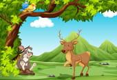 Comptine Le grand Cerf et le Lapin