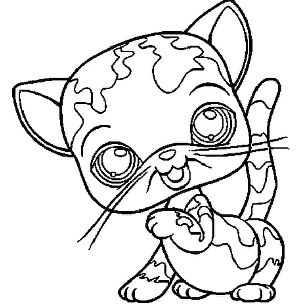 PET SHOP CHAT 3 : Coloriage Pet Shop chat 3 en Ligne Gratuit a imprimer sur COLORIAGE TV