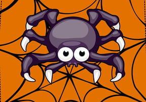 Sur le plancher, une araignée...