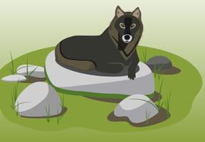 Le grand loup du bois