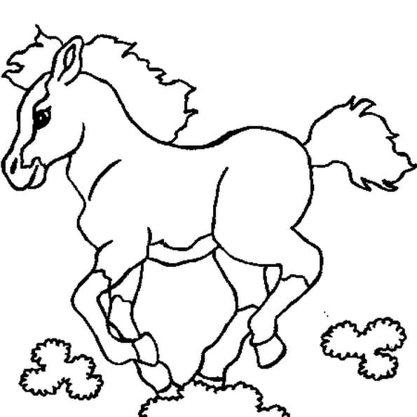 Coloriage poulain en ligne gratuit imprimer - Coloriage cheval et poulain ...