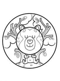 Animaux du monde, le petit ours