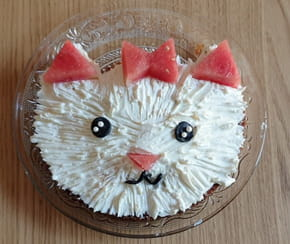 Gâteau chat [VIDEO]