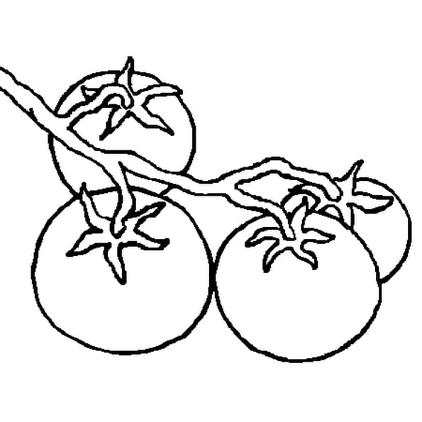 Coloriage tomate en ligne gratuit imprimer - Dessin de tomate ...