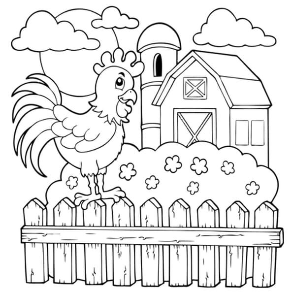 la grange et le coq de la ferme coloriage