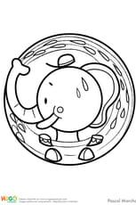 Animaux du monde, le petit éléphant
