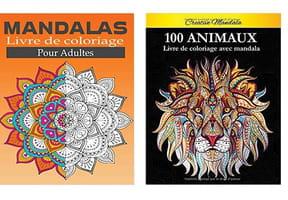 Cahier de coloriages pour adultes: notre sélection anti-stress
