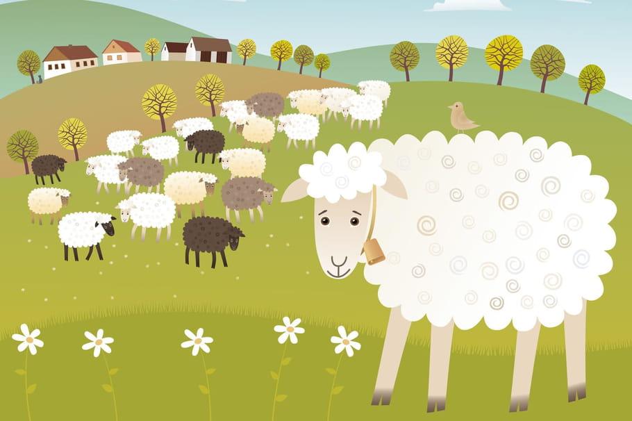 Comptine Mon père avait cinq cents moutons