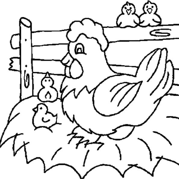 Coloriage de poule my blog - Coq a dessiner ...