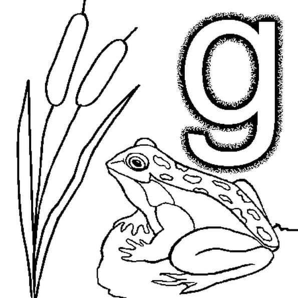 Dessin lettre g a colorier