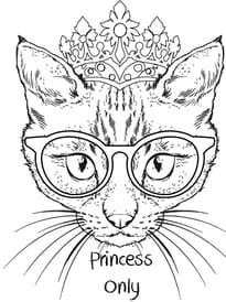 Chat princesse