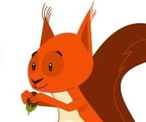 Dessiner un écureuil