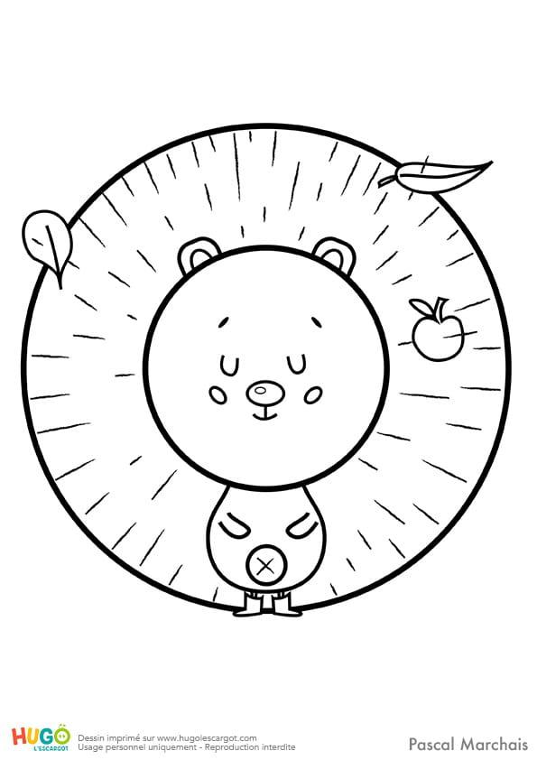 Animaux du monde, le petit hérisson
