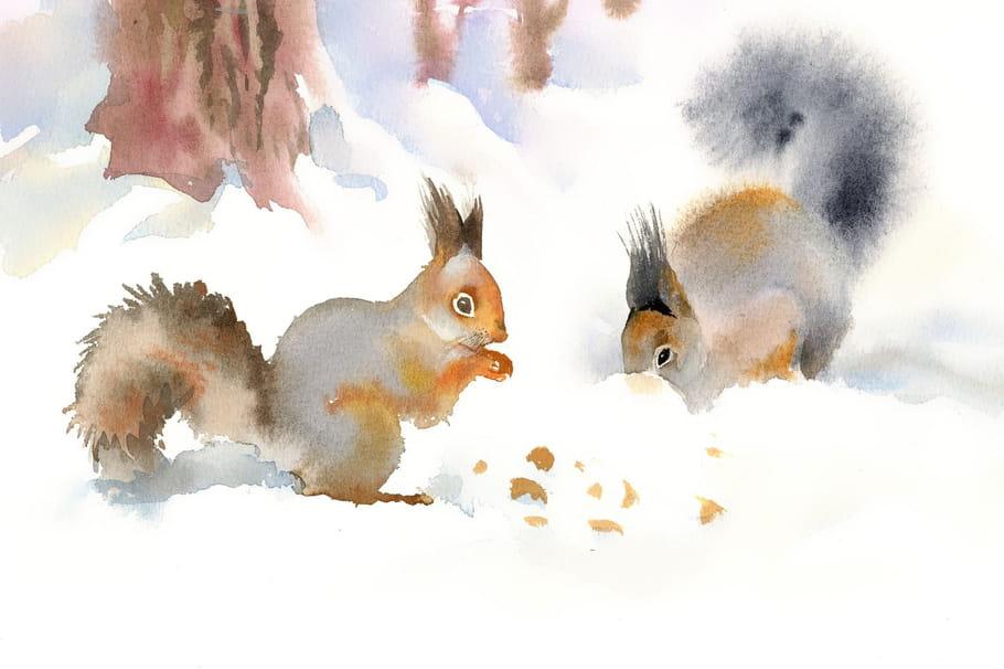 Comptine Moi je suis un écureuil