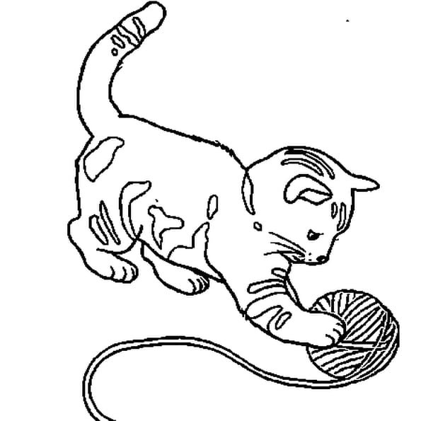bebe chat coloriage