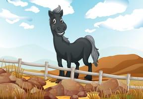 Sur son petit cheval gris