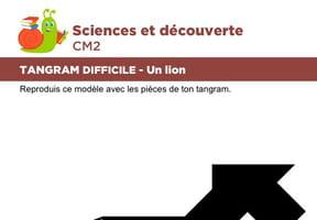 Le tangram niveau difficile, un lion