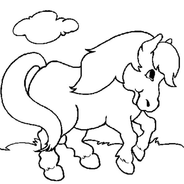Coloriage Poney En Ligne Gratuit à Imprimer