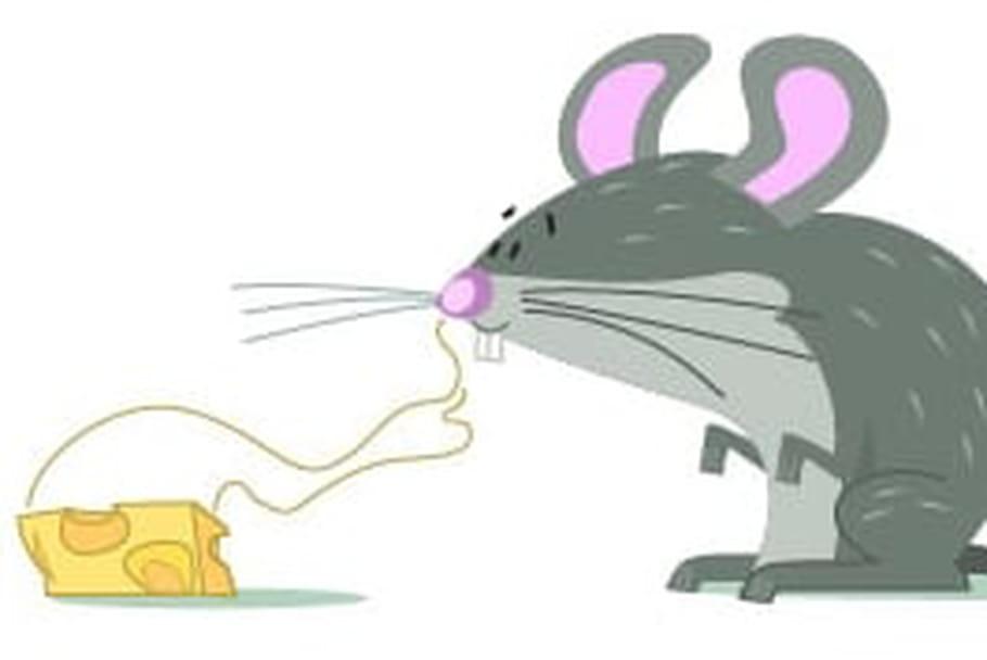 Dessiner une souris - Apprendre a cuisiner facilement ...