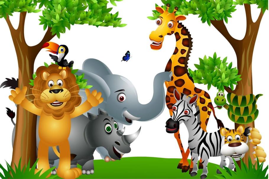 Tous les animaux du monde chansons pour enfants sur - Dessin de tous les animaux ...