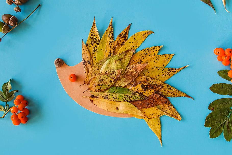 Activités et bricolages d'automne: les feuilles comme base créative
