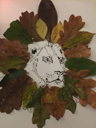 Etape 3: la crinière du lion