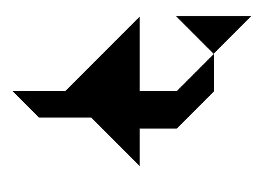Le tangram niveau difficile, un avion