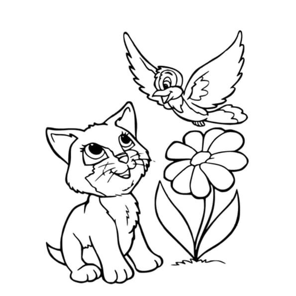 Dessin Chaton et Oiseau a colorier