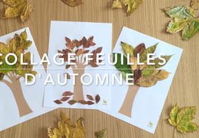 Collages feuilles d'automne