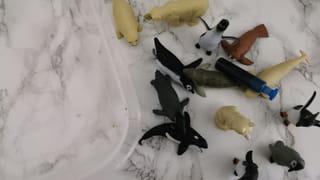 Etape 3: Ajoutez des animaux de la banquise