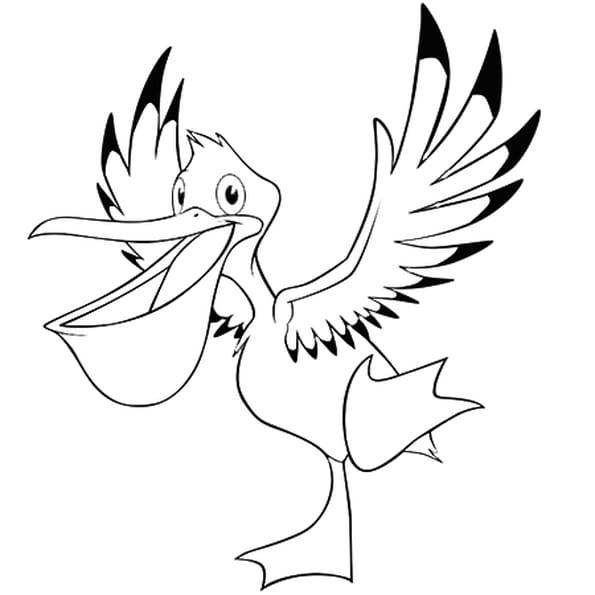 Coloriage Oiseau Pélican En Ligne Gratuit à Imprimer
