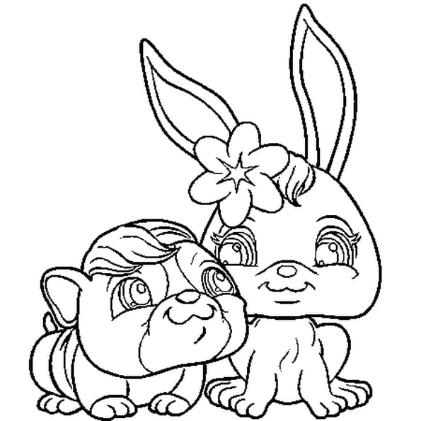 Dessin pet shop lapin chien a colorier