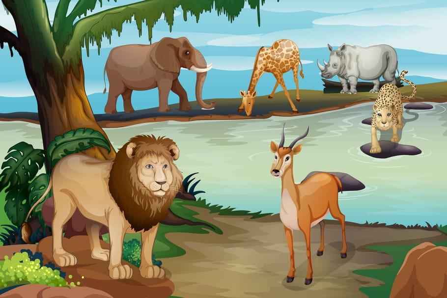 Comptine Le lion et la gazelle
