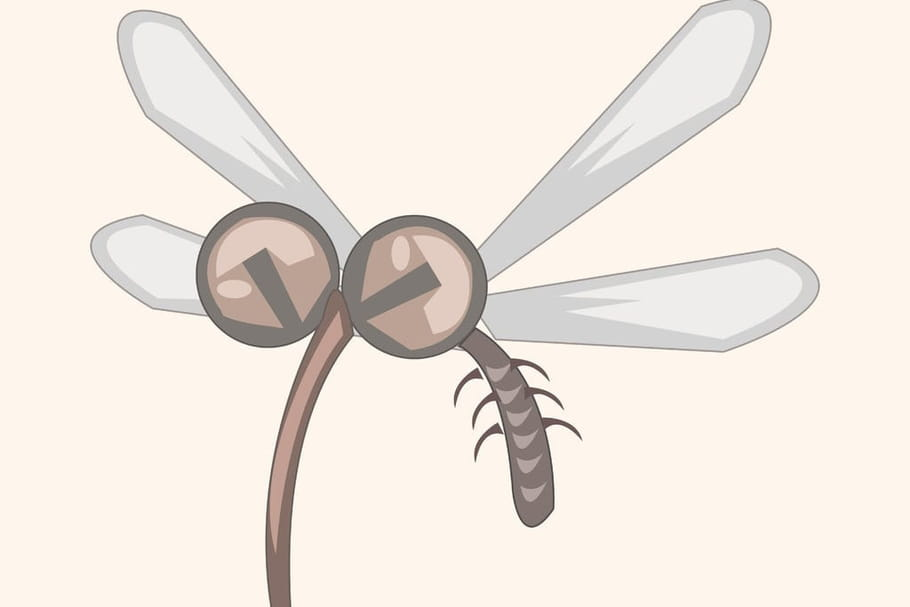 Comptine C'est l'été, trois petits moustiques