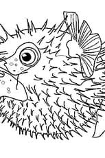 Coloriage poisson lune en Ligne Gratuit à imprimer