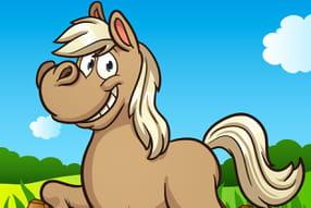 Poneys et équitation