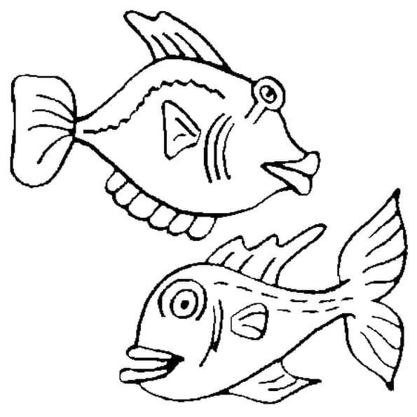 Dessin de poissons d'avril a colorier