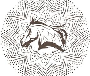 Mandala cheval