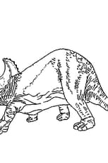Coloriage Dinosaure âgé