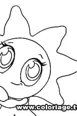 Zooble étoile de mer