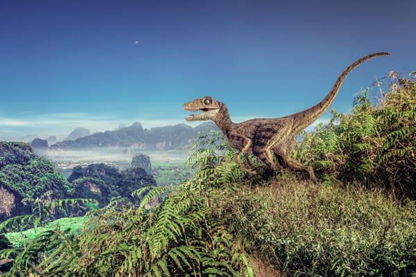 velociraptor-dinosaures